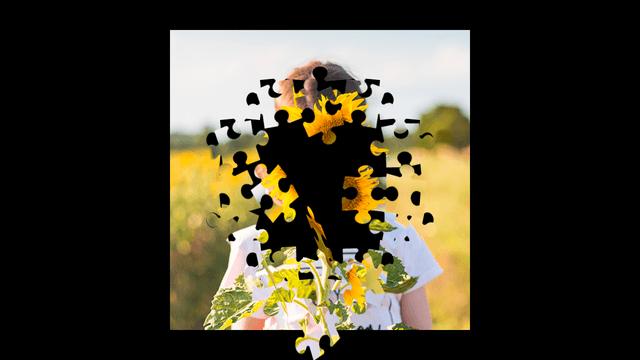 AviUtl、画像をパズルのピースにするスクリプト砕け散るパズル