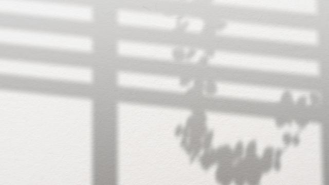 AviUtl、自由自在に影を作る