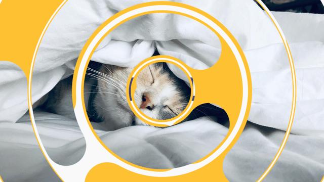 AviUtl、円を描くシーンチェンジ